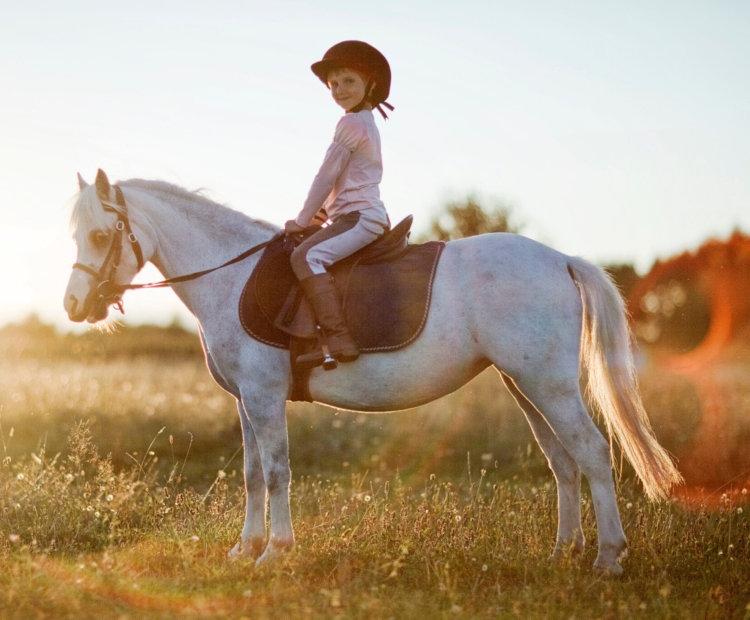 Cours de poney pour votre enfant