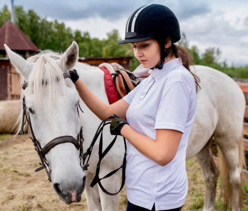 Cours équitation adulte