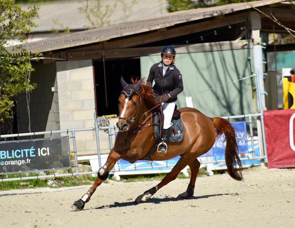 Centre Equestre : du débutant à la compétition