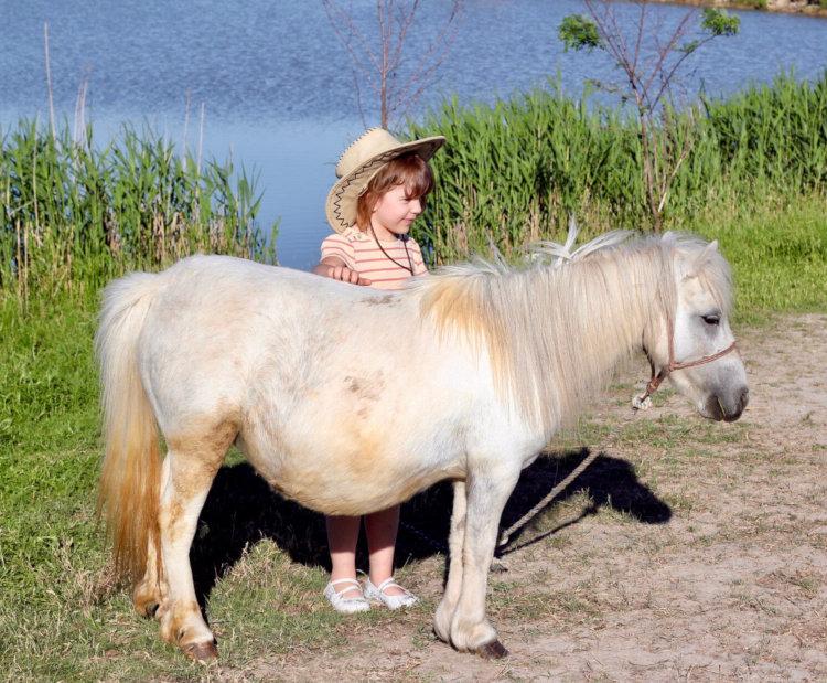 Le poney, pour les plus petits !