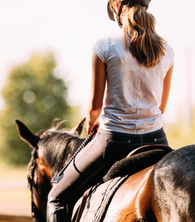 Stage d'équitation à Digne les Bains