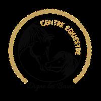Centre équestre de Digne les Bains Logo
